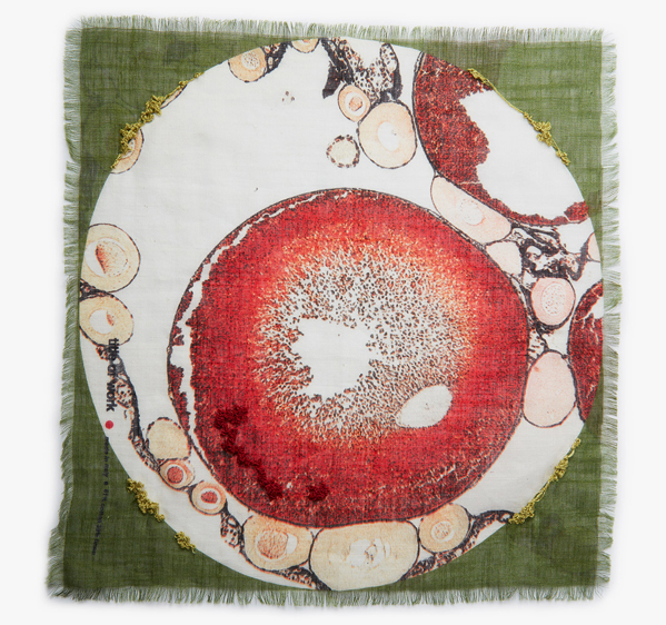 Image of Embroidered Newt Ovary Pocket Square